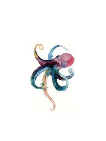 Octopus in Color