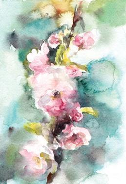 Peonies by Sophia Rodionov