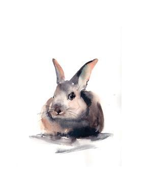 Portrait of a Rabbit II by Sophia Rodionov