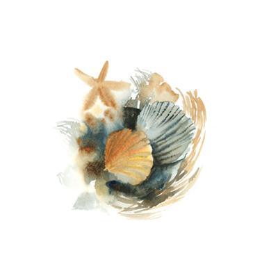 Shells by Sophia Rodionov