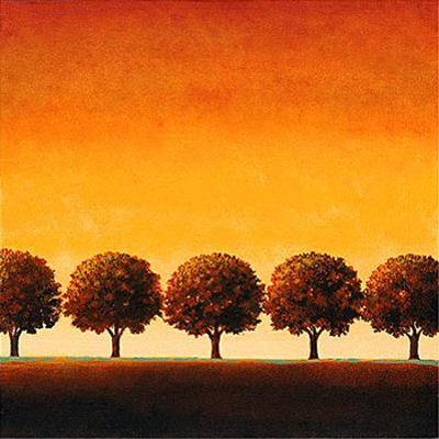 Sunset Valley I