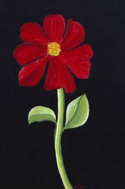 Red Cosmos by Soraya Chemaly