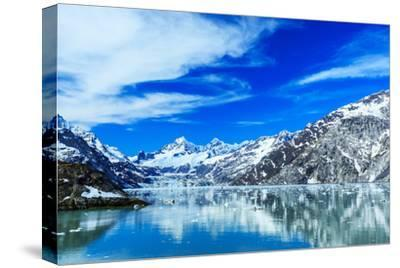 Panoramic View of Glacier Bay National Park. Alaska by sorincolac