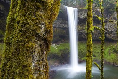 https://imgc.allpostersimages.com/img/posters/south-falls-silver-falls-state-park-oregon-united-states-of-america-north-america_u-L-PQ8QKN0.jpg?artPerspective=n