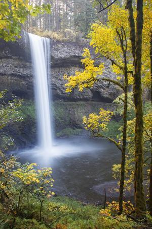https://imgc.allpostersimages.com/img/posters/south-falls-silver-falls-state-park-oregon-usa_u-L-PXR6CM0.jpg?p=0