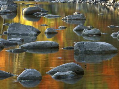 https://imgc.allpostersimages.com/img/posters/south-fork-potomac-r-monongahela-national-forest-west-virginia-usa_u-L-PN72NV0.jpg?p=0