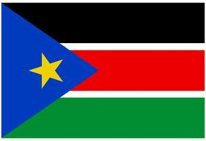 South Sudan Country National Flag Print Poster