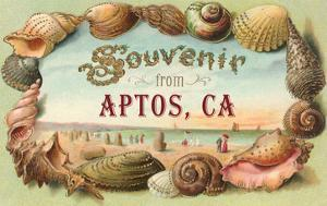 Souvenir from Aptos, California
