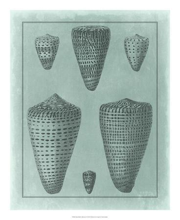 https://imgc.allpostersimages.com/img/posters/spa-shell-collection-i_u-L-F7MJUE0.jpg?artPerspective=n
