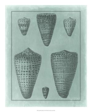Spa Shell Collection I