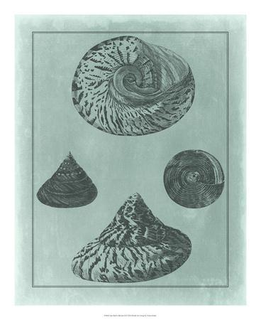 https://imgc.allpostersimages.com/img/posters/spa-shell-collection-ii_u-L-F7MJUF0.jpg?artPerspective=n