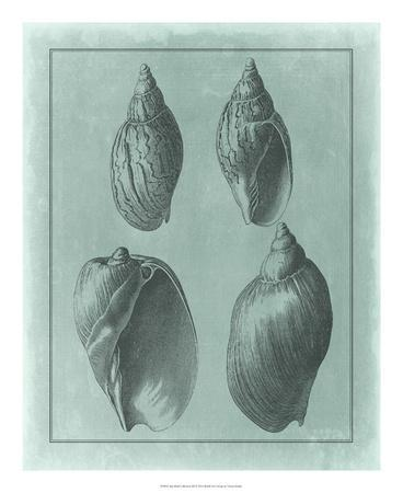 https://imgc.allpostersimages.com/img/posters/spa-shell-collection-iii_u-L-F7MJUG0.jpg?artPerspective=n