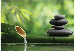 Spa Still Life With Bamboo Fountain And Zen Stone