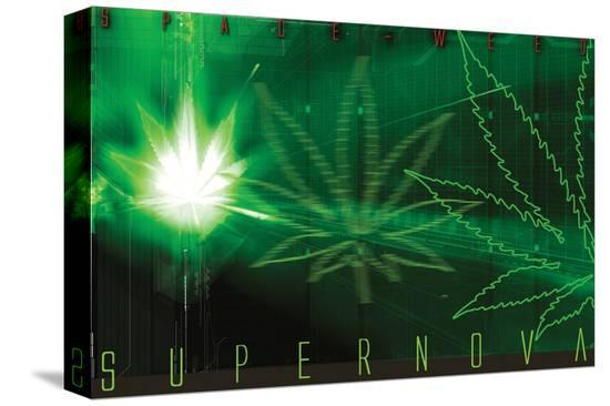 Space-Weed Supernova--Stretched Canvas Print