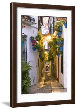 Spain  Andalusia  Cordoba. Calleja De Las Flores (Street of the Flowers) in the Old Town  at Dusk