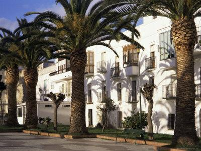 https://imgc.allpostersimages.com/img/posters/spanish-architecture-and-palm-trees-tarifa-andalucia-spain_u-L-P1TQFX0.jpg?p=0