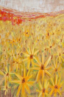 Spanish Sunflowers IV