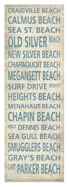 Cape Cod Beach Towns I by Sparx Studio