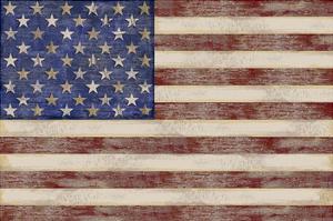 U.S. Flag by Sparx Studio
