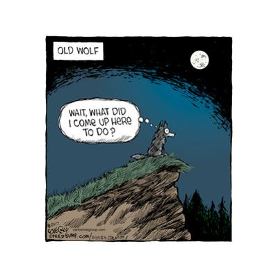 Old Wolf. Wait, what did I come up here to do? by Speed Bump