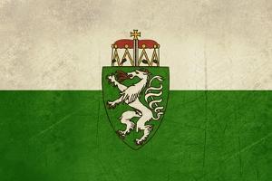 Grunge Austria State Of Steiermark Of Styria State Flag, Austria by Speedfighter