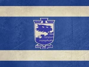 Grunge City Of Holon Flag From State Of Israel In Official Colours by Speedfighter