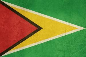Grunge Sovereign State Flag Of Country Of Guyana In Official Colors by Speedfighter