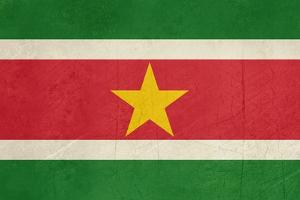 Grunge Sovereign State Flag Of Country Of Suriname In Official Colors by Speedfighter