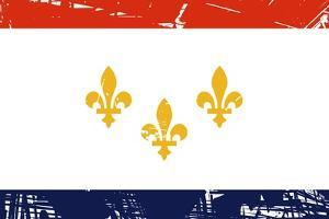 New Orleans City Flag, State Of Louisiana, U.S.A by Speedfighter