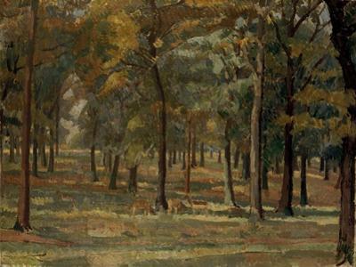 Richmond Park, 1914