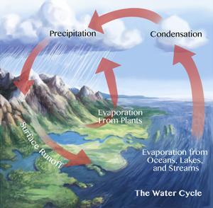 Earth's Water Cycle by Spencer Sutton