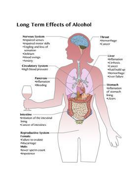 Long Term Effects of Alcohol by Spencer Sutton