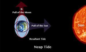 Neap Tide by Spencer Sutton