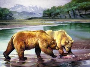 Coastal Grizz by Spencer Williams