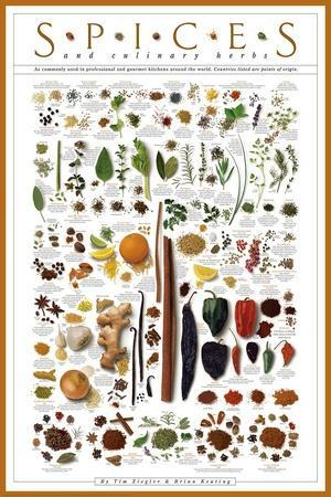 https://imgc.allpostersimages.com/img/posters/spices-and-culinary-herbs_u-L-F5MH200.jpg?artPerspective=n