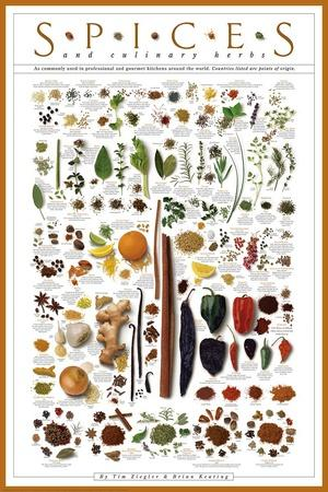 https://imgc.allpostersimages.com/img/posters/spices-and-culinary-herbs_u-L-F5MH200.jpg?p=0