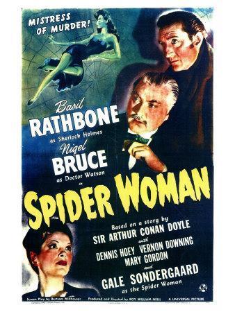https://imgc.allpostersimages.com/img/posters/spider-woman_u-L-P970RU0.jpg?artPerspective=n