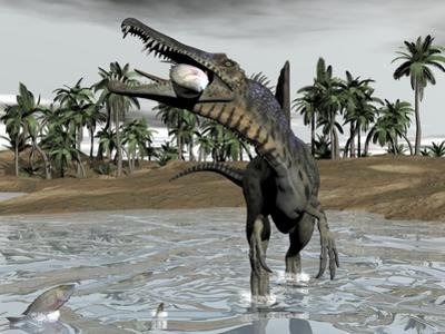 Spinosaurus Dinosaur Walking in Water and Feeding on Fish