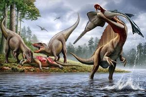 Spinosaurus Hunting an Onchopristis with a Pair of Carcharodontosaurus in Background