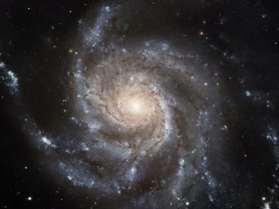 Spiral Galaxy M101