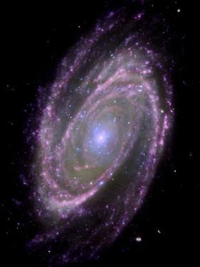 Spiral Galaxy M81, Composite Image