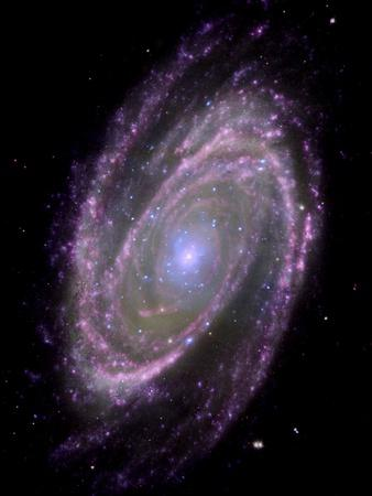https://imgc.allpostersimages.com/img/posters/spiral-galaxy-m81-composite-image_u-L-PZIUOT0.jpg?artPerspective=n