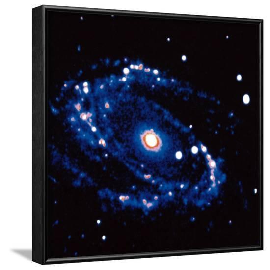 Spiral Galaxy M81 in Constallation of Ursa Minor--Framed Photographic Print