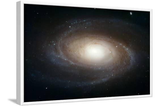Spiral Galaxy M81--Framed Art Print