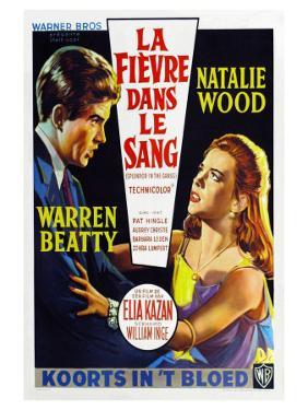 Splendor in the Grass, Belgian Movie Poster, 1961