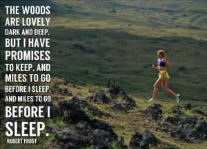 Miles to Go Before I Sleep by Sports Mania