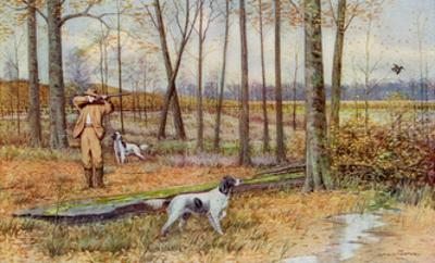Sportsman with His English Setters Hunting Woodcock, Circa 1900