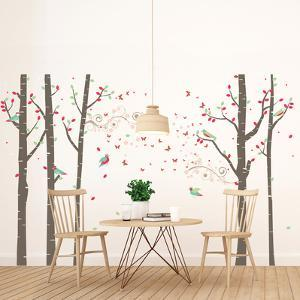 Spring Birch Forest Tree Scene