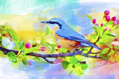 https://imgc.allpostersimages.com/img/posters/spring-flowers-and-bird-6_u-L-Q1CQHHV0.jpg?artPerspective=n