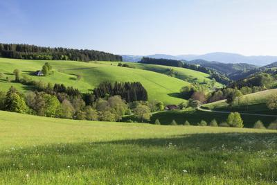 https://imgc.allpostersimages.com/img/posters/spring-in-the-glottertal-black-forest-baden-wurttemberg-germany_u-L-Q1EY54L0.jpg?artPerspective=n